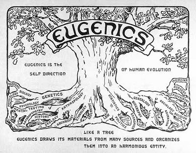 Hitler Made Eugenics Famous, But He Took It From United States