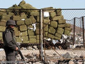105 Tons Of Marijuana Seized In Baja California