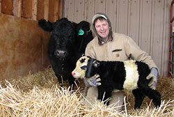 "WTF?!?: Rare ""Panda Cow"" Born On Farm Near Campion"