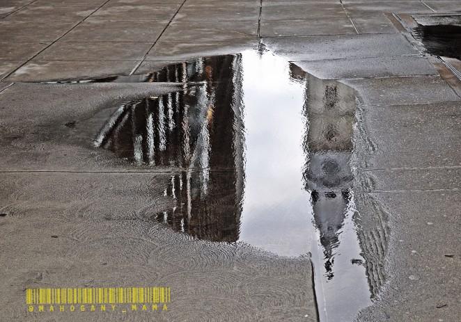 #Aesthetica VIII: Reflections (Photos By: @Mahogany_Mama)