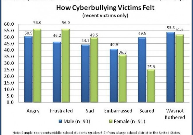 Cyberbullying: Can We Just Blame The Kids?